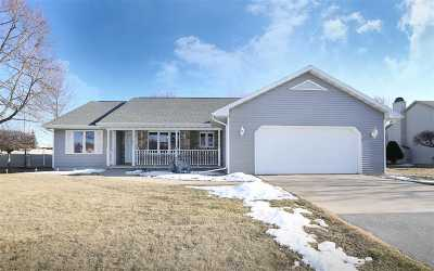 Appleton Single Family Home For Sale: W2927 Springfield