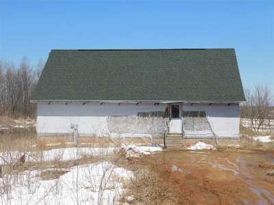 Shawano Single Family Home Active-No Offer: N5115 Meadowlark