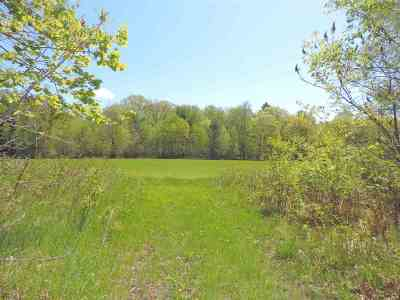 Residential Lots & Land Active-No Offer: 11124 Wild Turkey