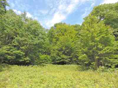 Suring Residential Lots & Land Active-No Offer: Hwy 32