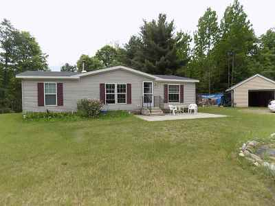 Mountain Single Family Home Active-No Offer: 12109 Up North