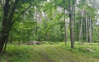 Shawano County Residential Lots & Land Active-No Offer: W19035 Elm