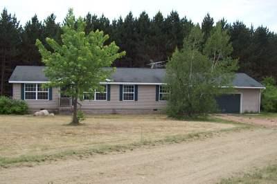 Single Family Home Active-No Offer: N9383 Baker