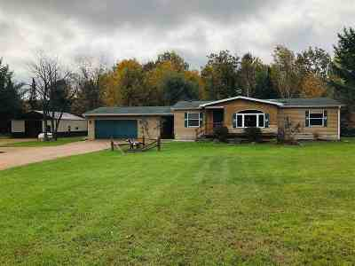 Shawano County Single Family Home Active-Offer No Bump-Show: N6052 River