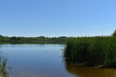 Residential Lots & Land Active-Offer No Bump: N Porcupine Lake