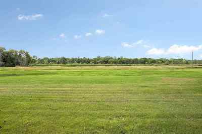 Residential Lots & Land Active-No Offer: Hwy Y