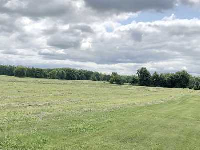 Residential Lots & Land Active-No Offer: 4903 Molitor