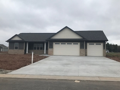 Greenville Single Family Home Active-No Offer: N1672 Kas