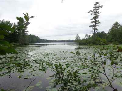 Shawano County Residential Lots & Land Active-No Offer: Big Lake