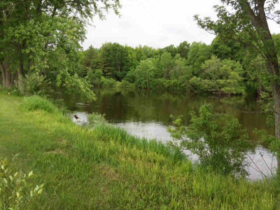 Residential Lots & Land Active-No Offer: Morning Retreat