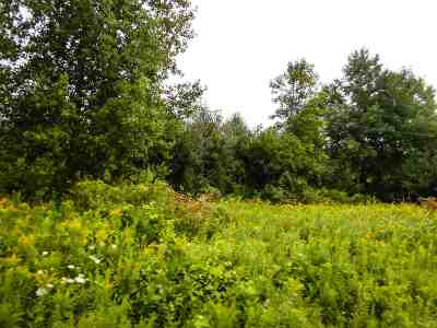 Residential Lots & Land Active-Offer No Bump: 4291 Luedke