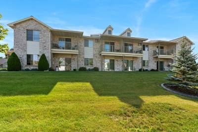Oneida Condo/Townhouse Active-Offer No Bump: 4045 Frobisher Fields #1