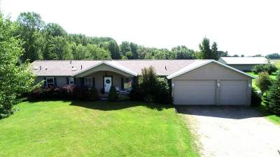 Pulaski WI Single Family Home Active-No Offer: $395,000