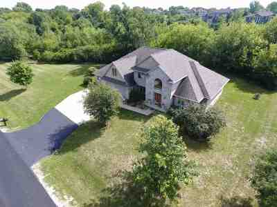 Oshkosh Single Family Home Active-No Offer: 4353 Ravine