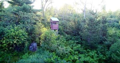 Marinette County Residential Lots & Land Active-No Offer: Woodchuck