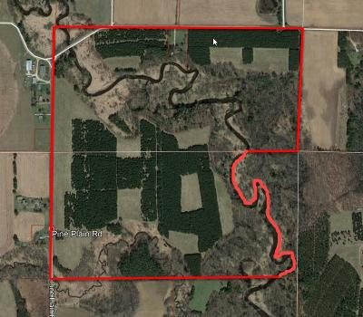 Waupaca Residential Lots & Land Active-No Offer: Pine Plain