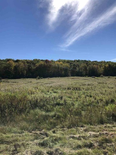 Waupaca Residential Lots & Land Active-No Offer: Meadow View