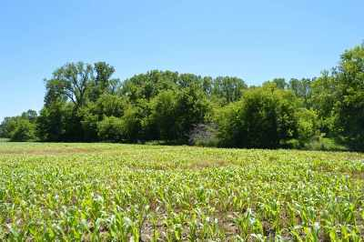 Residential Lots & Land Active-No Offer: Apple Creek