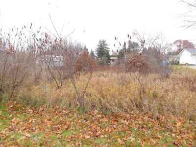 Residential Lots & Land Active-No Offer: Countryside