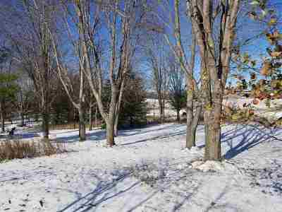 Hilbert WI Residential Lots & Land Active-Offer No Bump: $29,900