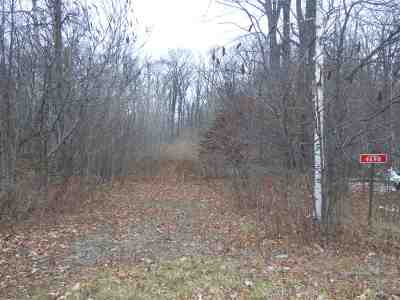 Residential Lots & Land Active-No Offer: 4698 E Benelli