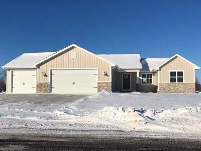 Appleton Single Family Home Active-No Offer: W5622 Hoelzel