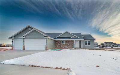 Appleton Single Family Home Active-Offer No Bump-Show: 5460 N Providence