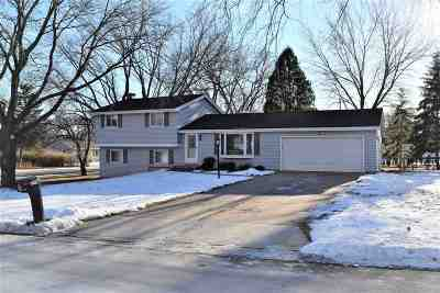 Green Bay Single Family Home Active-No Offer: 240 Longview