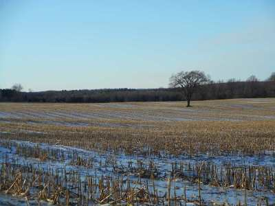 Shawano County Residential Lots & Land Active-No Offer: Hwy G