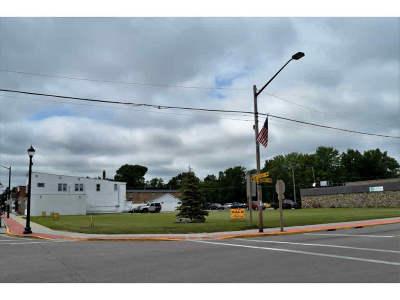 Pulaski Residential Lots & Land Active-No Offer: 115 W Pulaski
