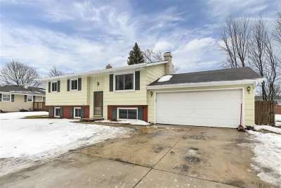 Appleton Single Family Home Active-No Offer: 1233 E Mitchell