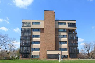 De Pere Condo/Townhouse Active-No Offer: 2130-4s Lost Dauphin