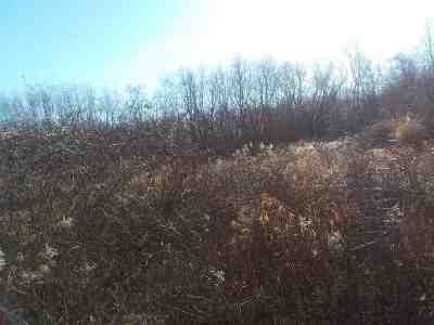 Oshkosh Residential Lots & Land Active-No Offer: Sunnyview