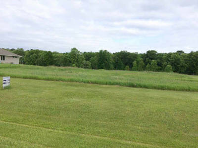 Residential Lots & Land Active-Offer No Bump: Morning Retreat