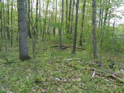 Residential Lots & Land Active-No Offer: Hedgewood