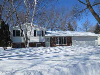 Green Bay Single Family Home Active-Offer No Bump: 600 Delwiche