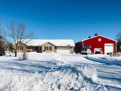 Shawano County Single Family Home Active-Offer No Bump: W670 S Town Line