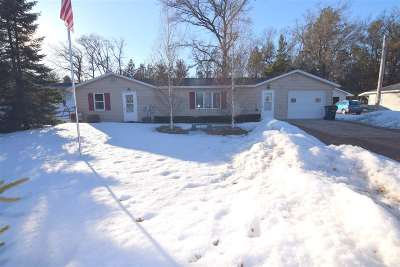Shawano Single Family Home Active-No Offer: N6309 Lake