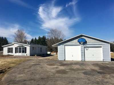 Shawano Single Family Home Active-No Offer: N6673 Ash