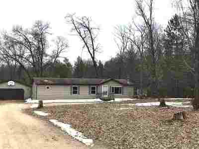 Shawano Single Family Home Active-No Offer: W4923 Lulu Lake