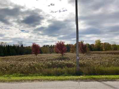 Pulaski Residential Lots & Land Active-No Offer: 8503 South Chase