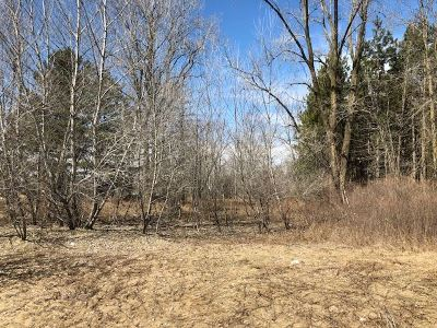 Residential Lots & Land Active-No Offer: Chicken Shack