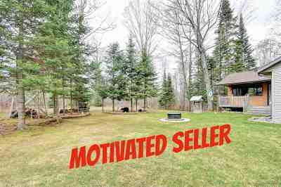 Oconto County Single Family Home Active-No Offer: 17316 Frontage