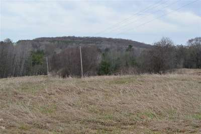 Residential Lots & Land Active-No Offer: N Flat Rock