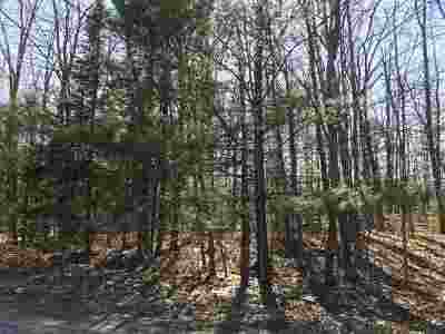 Residential Lots & Land Active-No Offer: N White Potato Lake