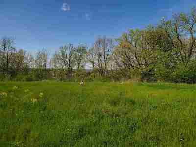 Oshkosh Residential Lots & Land Active-No Offer: 4234 Stonegate