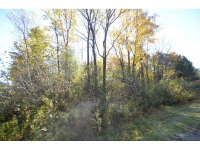 Residential Lots & Land Active-No Offer: Hwy E