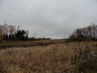 Pulaski Residential Lots & Land Active-No Offer: Hwy 29
