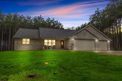 Sobieski Single Family Home Active-No Offer: 433 Hoganwood