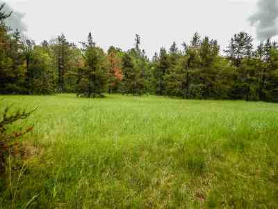 Residential Lots & Land Active-No Offer: Silver Creek